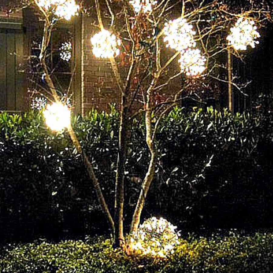 Outdoor Tree Lighting Ideas